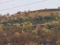 A hill slope above a village